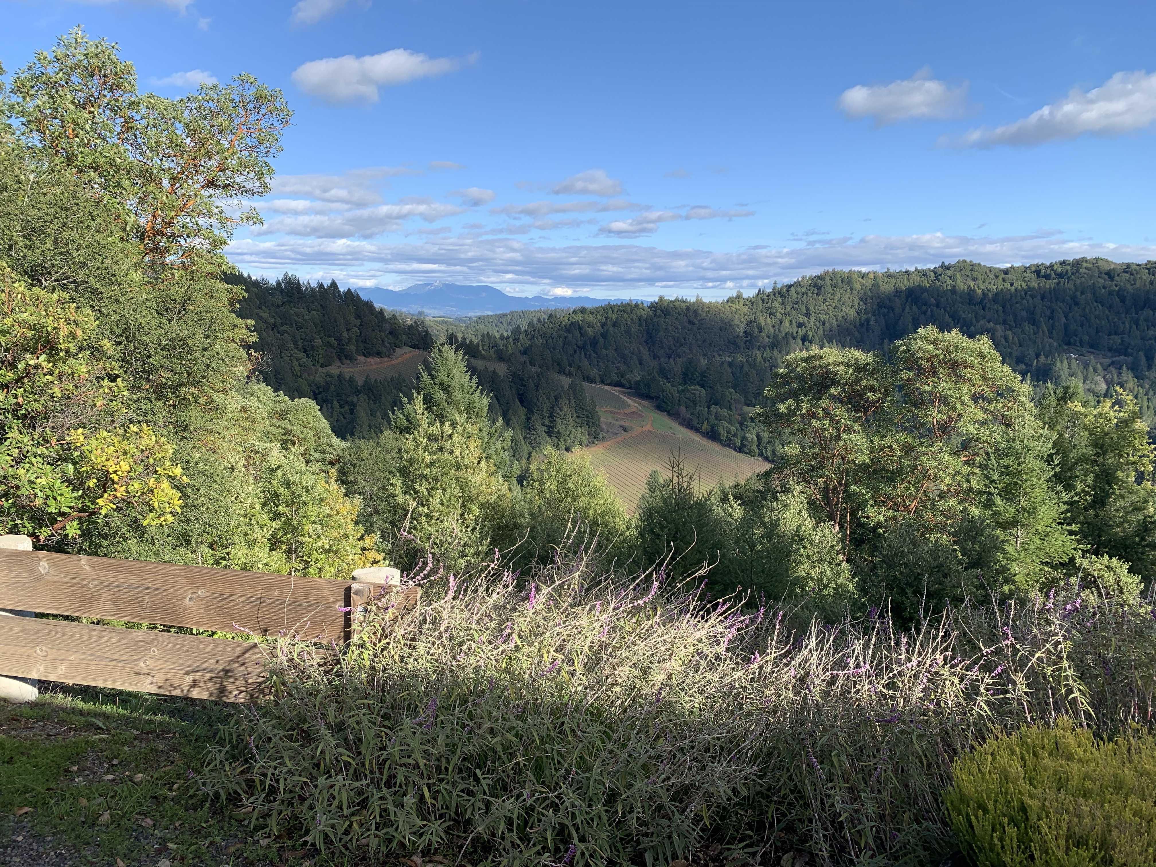0000 Mill Creek Rd, Healdsburg, CA, 95448 - 25