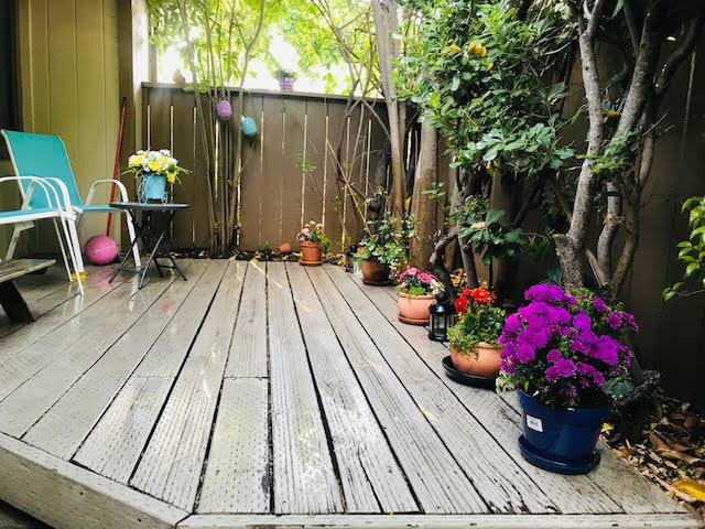 49 Showers Drive  #Y479, Mountain View, CA, 94040 - 11